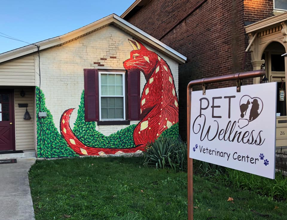 about our veterinary practice Cynthiana, KY